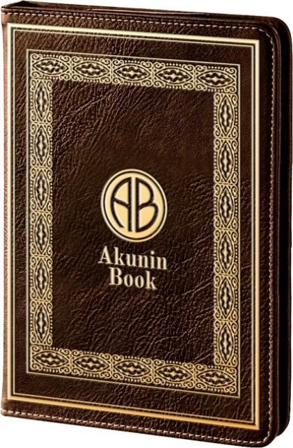 Onyx C63ML Akunin Book